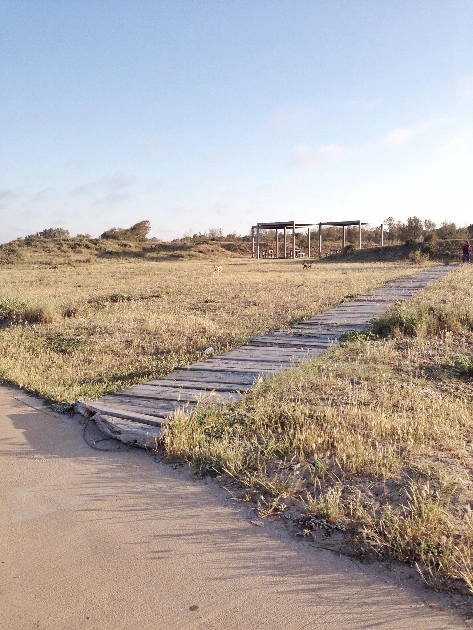 Paseo Marítimo El Saler