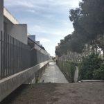 viviendas tuteladas y centro de dia